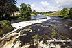 Linton Falls on the River Wharfe - click to zoom
